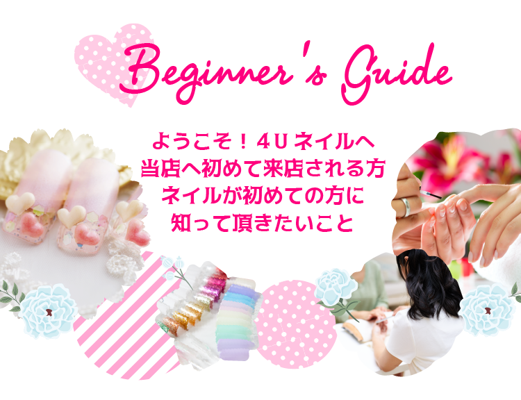 beginers_guide